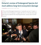 Ontario's review of Endangered Species Act must address long-term ecosystem damage