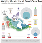 Mapping the decline of Canada's caribou