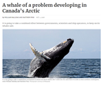 A whale of a problem developing in Canada's Arctic